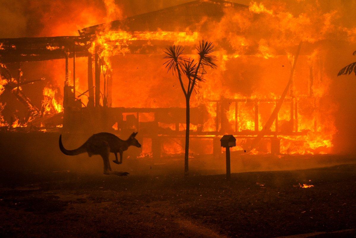 """Una toma de los incendios hecha por @Matthew Abbott, quien dice: """"Mi último día de la década se sintió como el Apocalipsis""""."""